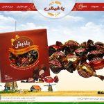 طراحی وب در تبریز